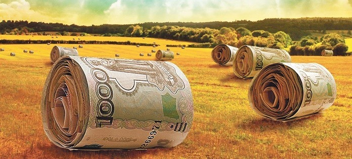 Бизнес-план образец с расчетами сельское хозяйство