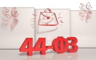 Форма плана закупок — образец заполнения формы обоснования при формировании плана закупок. Где скачать форму плана закупок по 44 ФЗ?